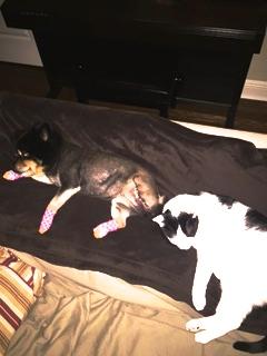 Sarah and kitty