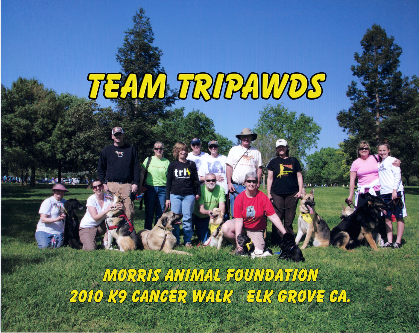 Team Tripawds, walk, dog, cat, cancer, support, amputee, three-legged